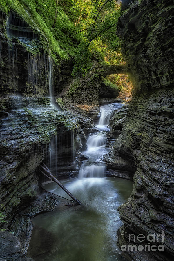New York Photograph - Waterfalls From The Glen by Imma Barrera