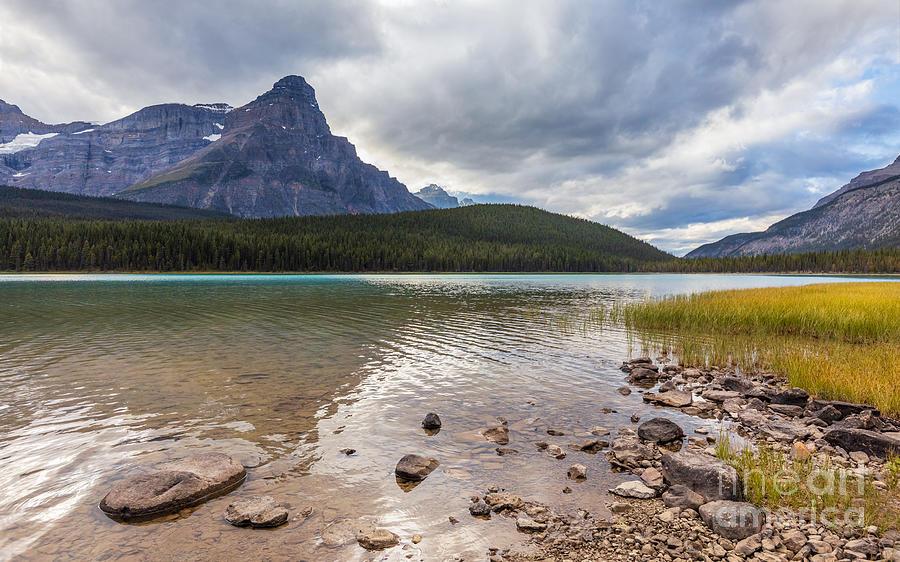 Waterfowl Lake and Mt. Chephren by Alma Danison