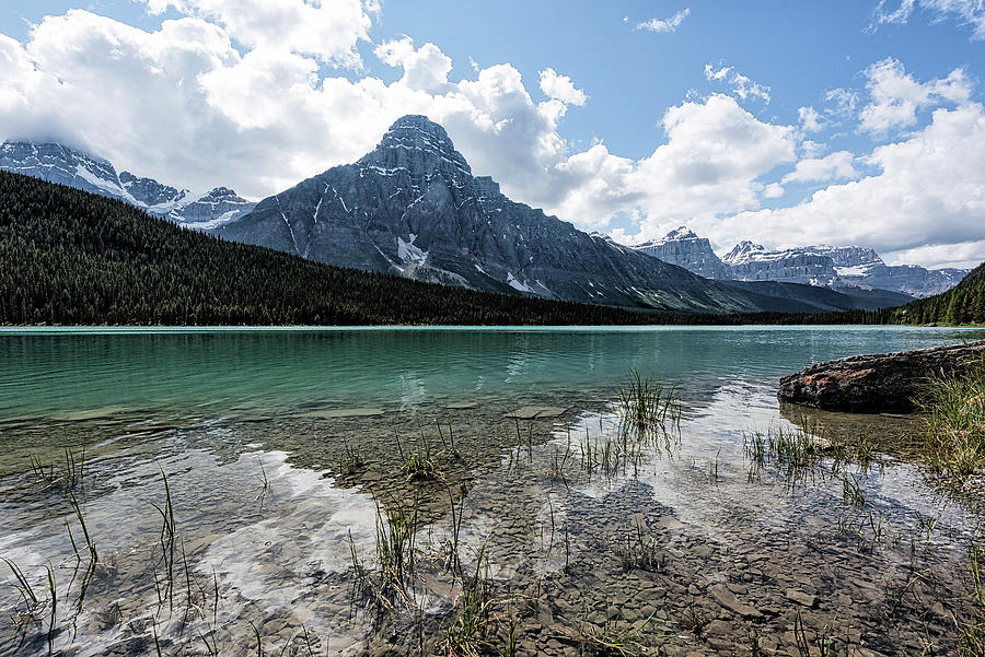 Waterfowl Lake by Johanna Froese