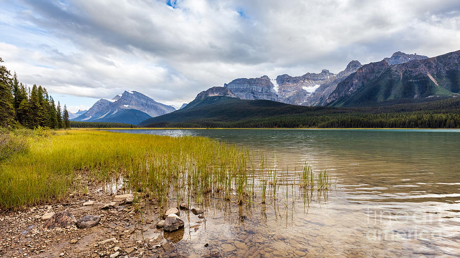 Waterfowl Lakes by Alma Danison