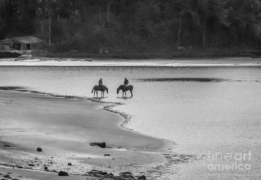 Watering horses BW by Barry Bohn