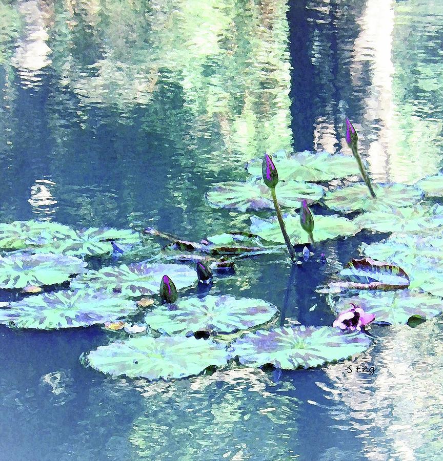 Waterlily Buds300 Digital Art
