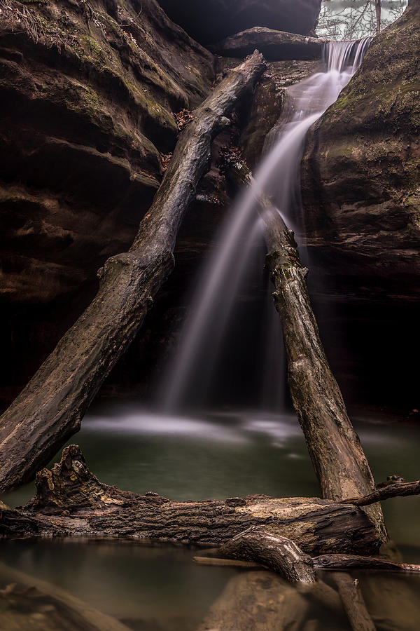 Waterlogged by Ray Silva