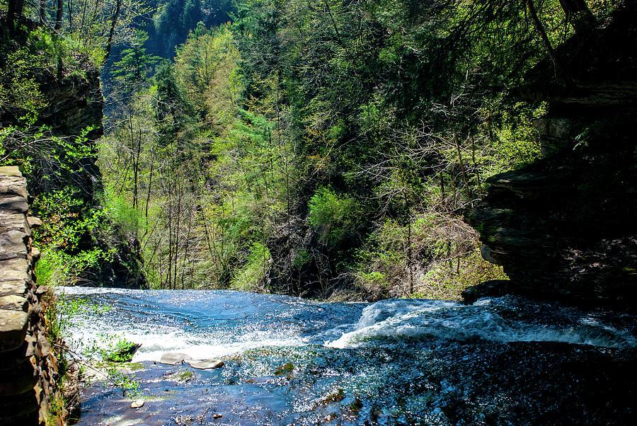 Waters Edge Photograph