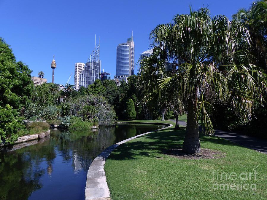 Waterside - Royal Botanical Gardens - Sydney by Phil Banks