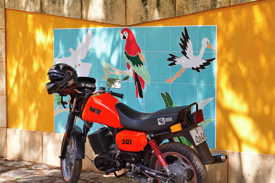 Watkin Park Bird Mural and Motorcycle by Paul Rebmann