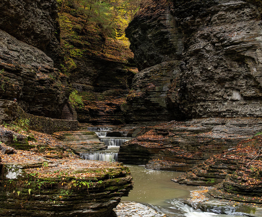 Watkins Glen Autumn by Joshua House