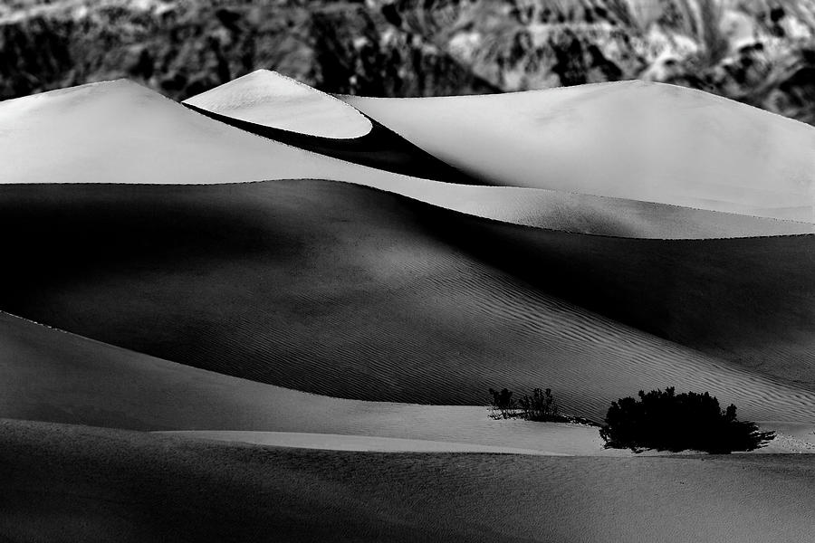 Waves of Sand in Black and White by Don Hoekwater Photography