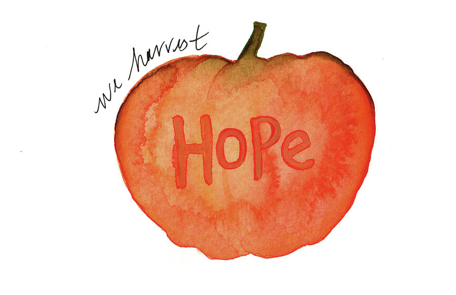 We harvest hope by Anna Elkins
