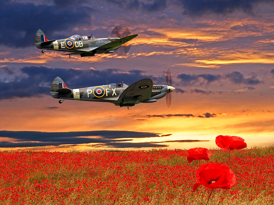 We Will Remember Them - Spitfires Over Poppy Field by Gill Billington