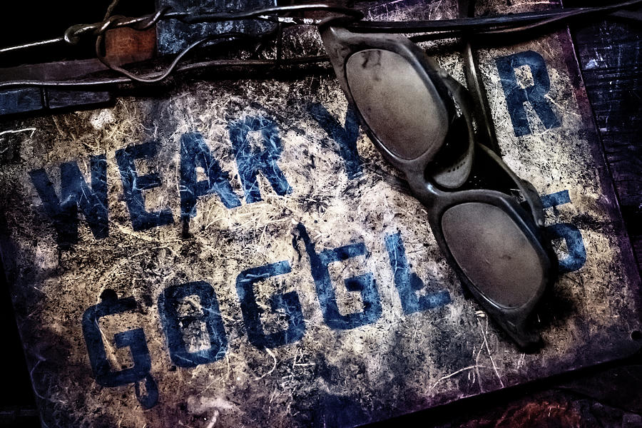 Wear Your Goggles  by Susan Rissi Tregoning