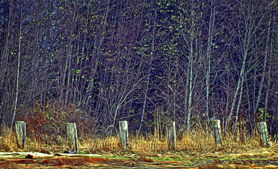 Weathered Fence Posts by Richard Farrington