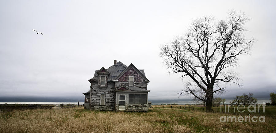 Country Photograph - Weathered Homestead by Patrick Ziegler