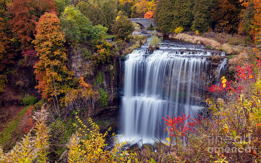 Webster's Falls Tiered Curtain by Alma Danison