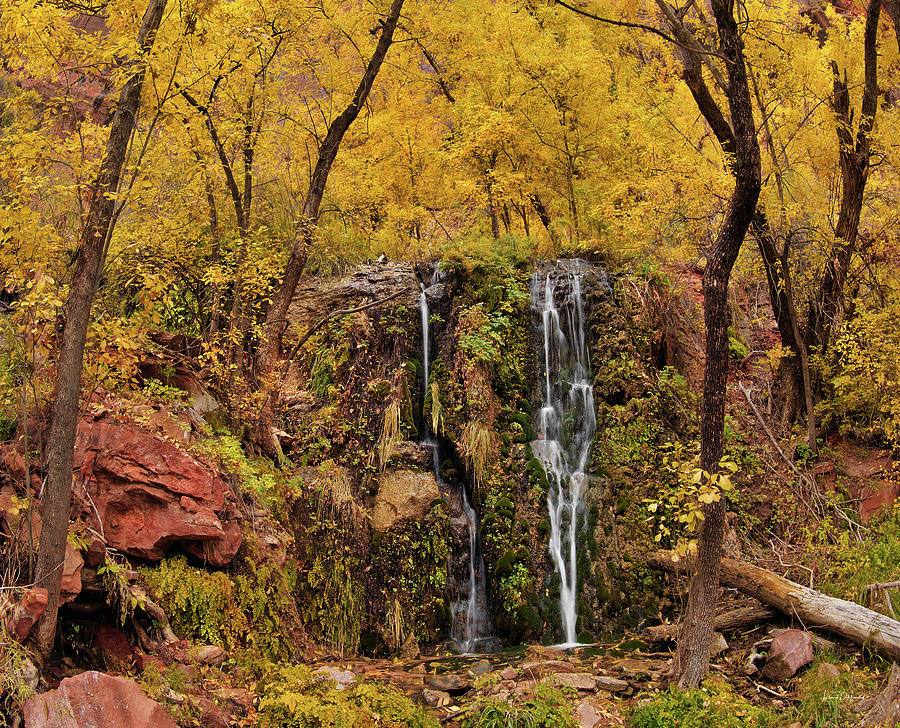 Autumn Photograph - Weeping Rock by Leland D Howard