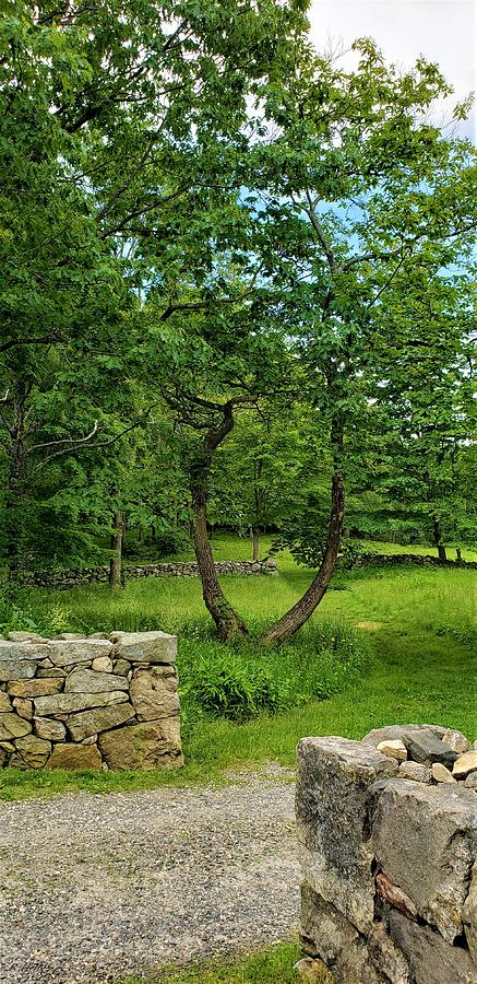 WEIR FARM STONE WALLS by Rob Hans