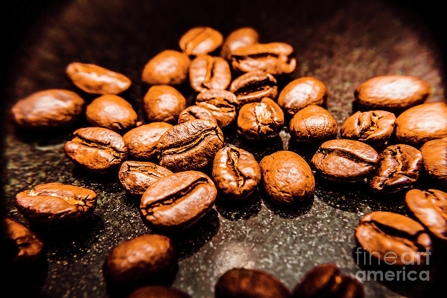 Coffee Beans Photograph - Well Rounded by Jorgo Photography - Wall Art Gallery