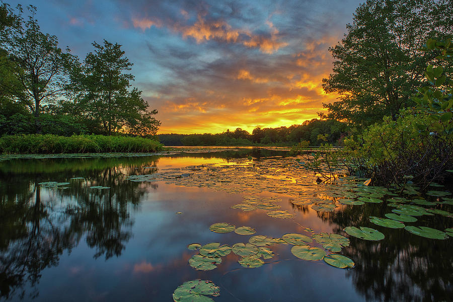Wellesley Lake Waban Sunset by Juergen Roth