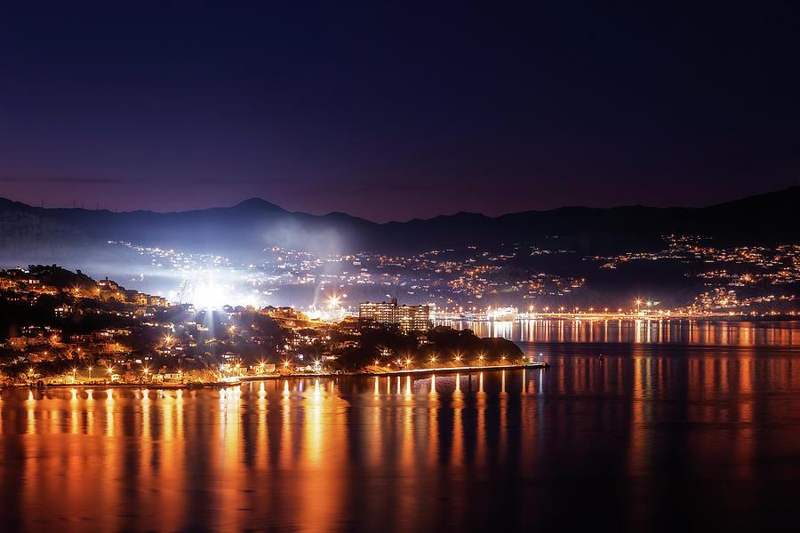 Wellington Harbor by Werner Kaffl
