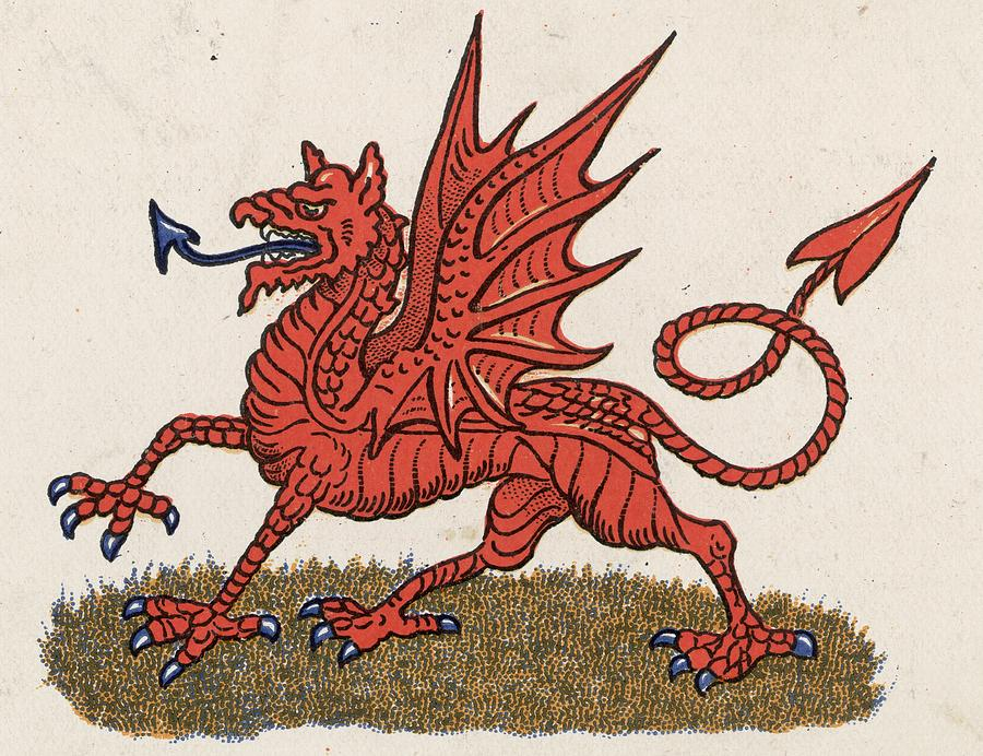 Welsh Dragon Photograph by Hulton Archive