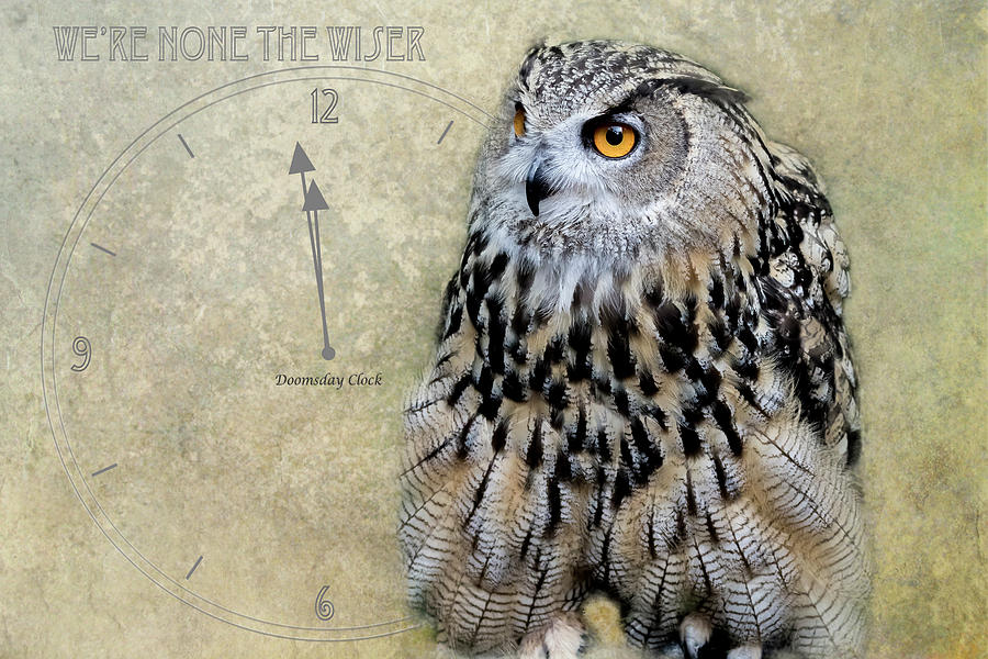 We're None The Wiser by Belinda Greb
