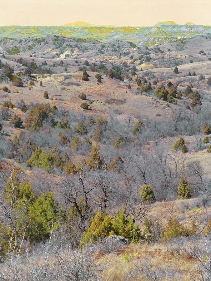 West Dakota Prairie Reverie by Cris Fulton