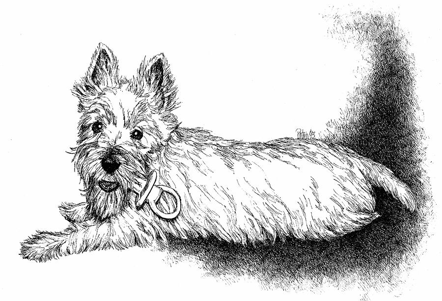 West Highland Terrier by Patrice Clarkson