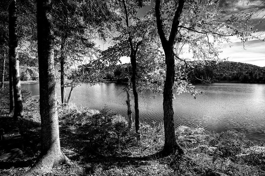 West Lake Calm by David Patterson