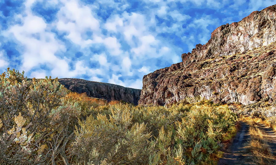 West Little Owyhee Canyon by Anthony Dezenzio