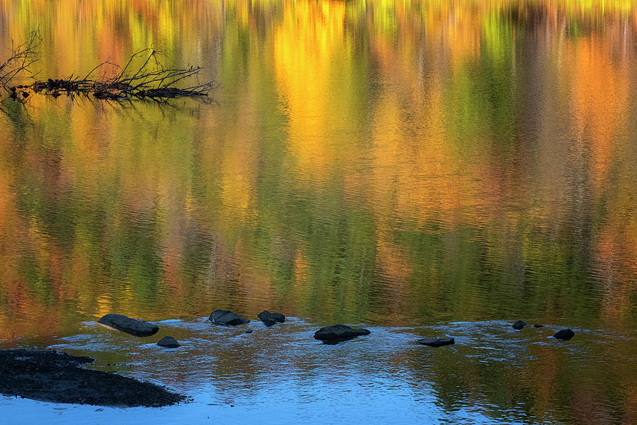 West River Reflections II by Tom Singleton