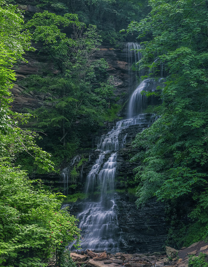 West Virginia Cathedral Falls Vertical by Dan Sproul