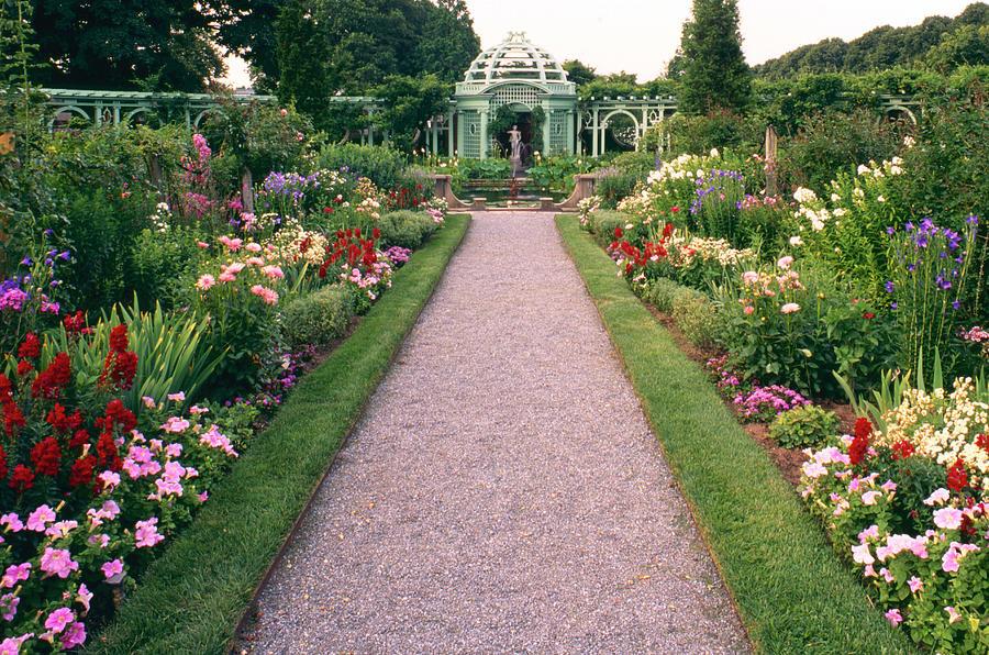 Westbury Arboretum Photograph by Richard Felber
