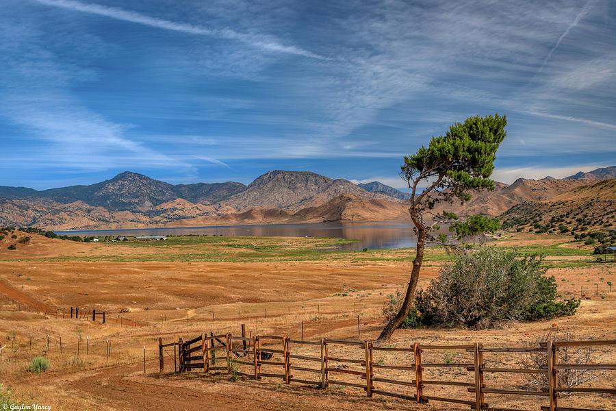 Western Days of Yesteryear  by Gaylon Yancy