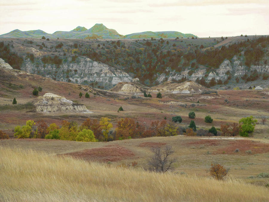 North Dakota Photograph - Western Edge Grasslands Grandeur by Cris Fulton