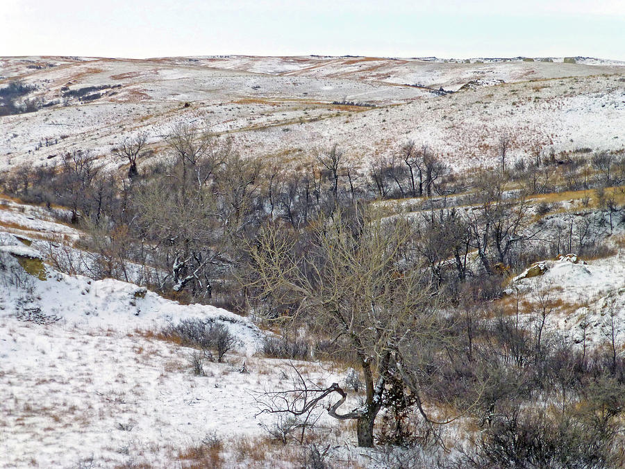 North Dakota Photograph - Western Edge Winter Hills by Cris Fulton