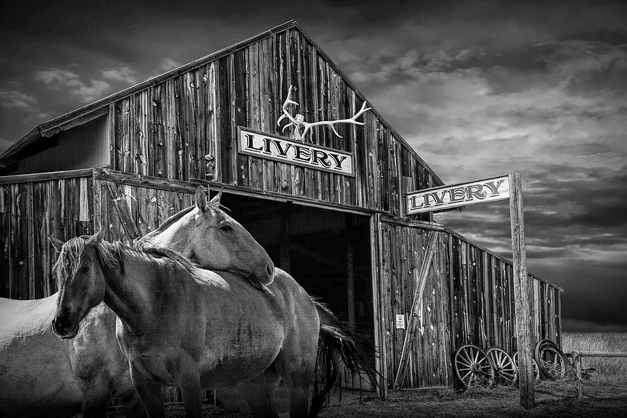 Western Horses at the Livery Stable in Black and White by Randall Nyhof