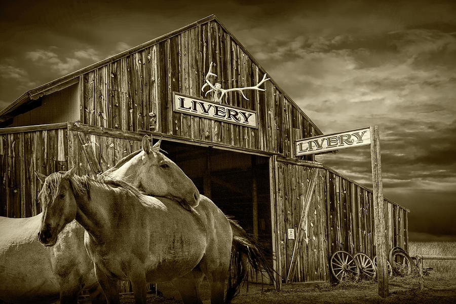 Western Horses at the Livery Stable in Sepia Tone by Randall Nyhof