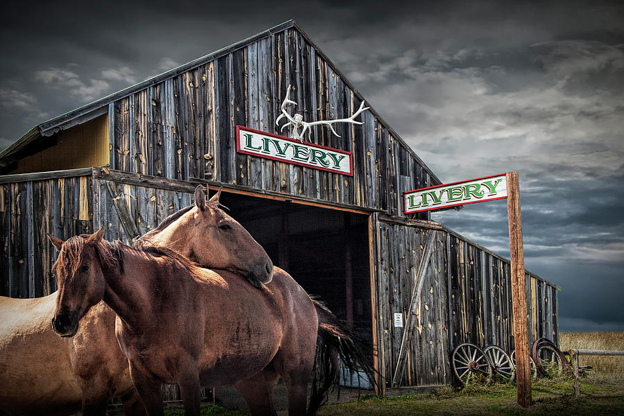 Western Horses at the Livery Stable by Randall Nyhof
