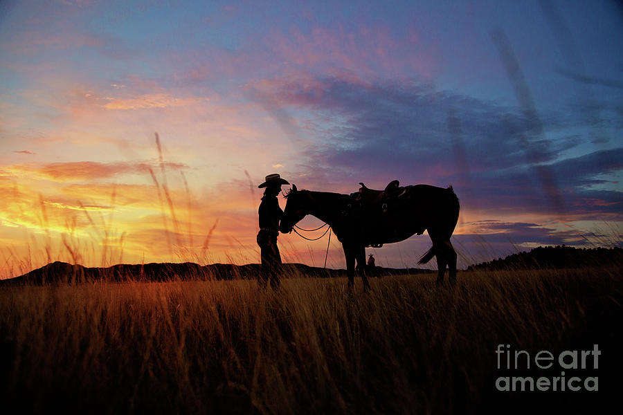 Western Silhouette  by Terri Cage