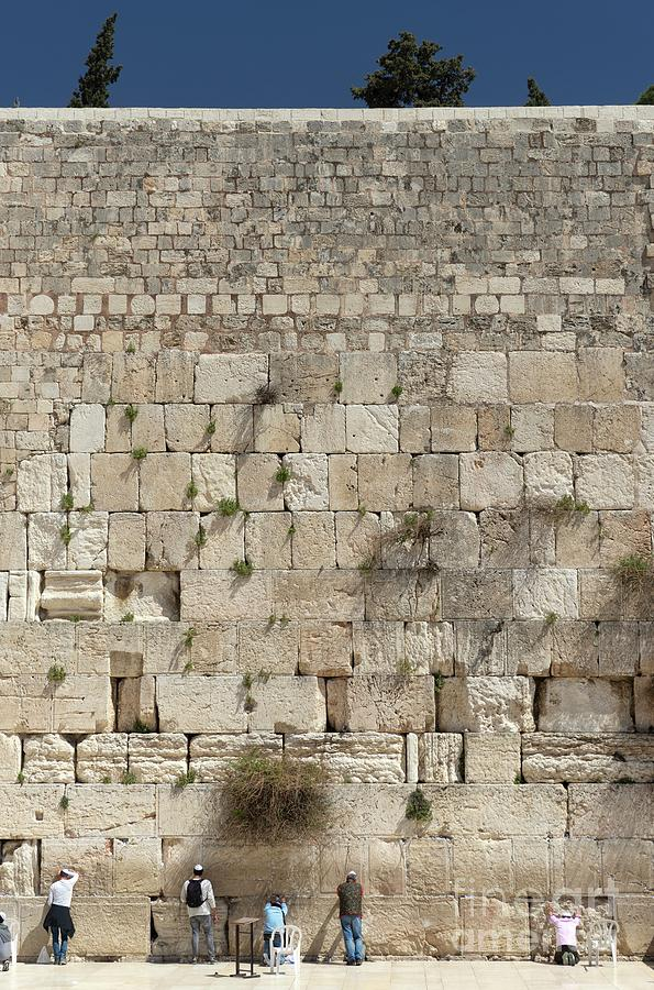 Ancient Photograph - Western Wall by Science Photo Library