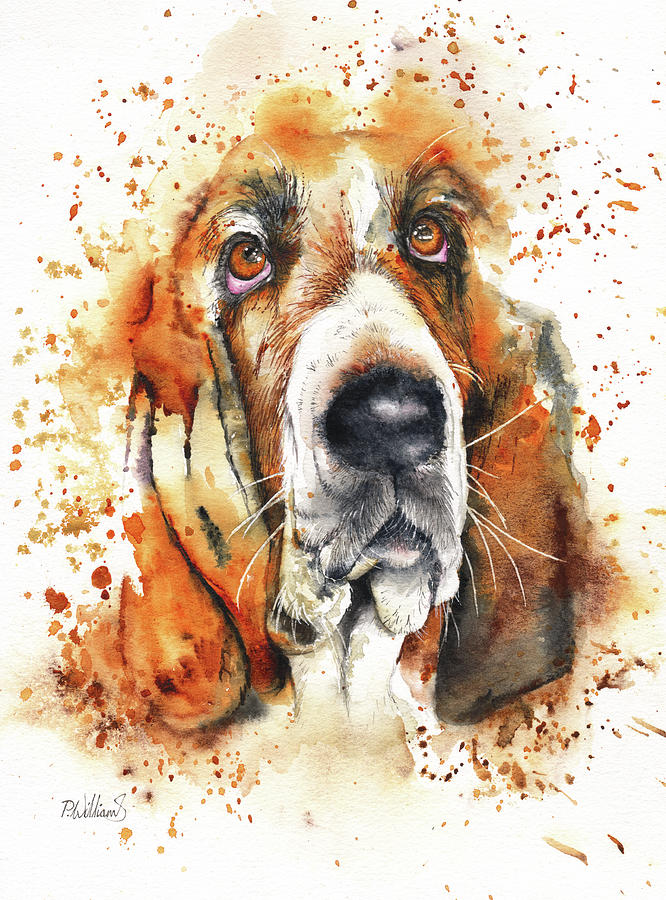 Wet Basset by Peter Williams