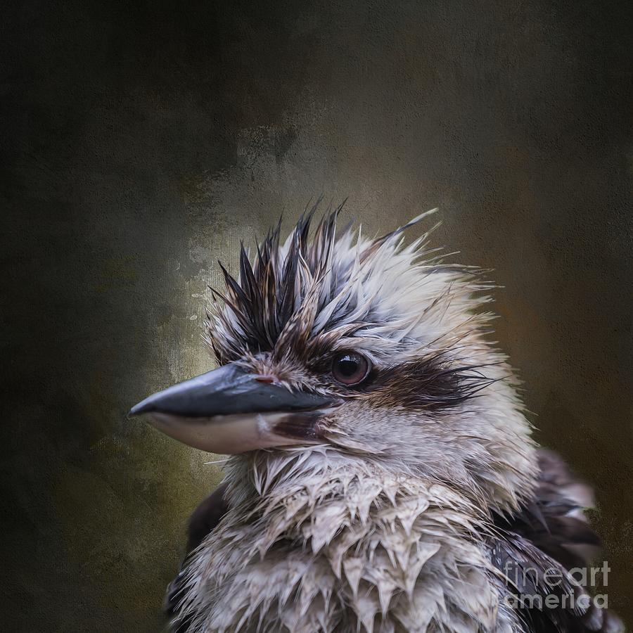 Wet Bird by Eva Lechner