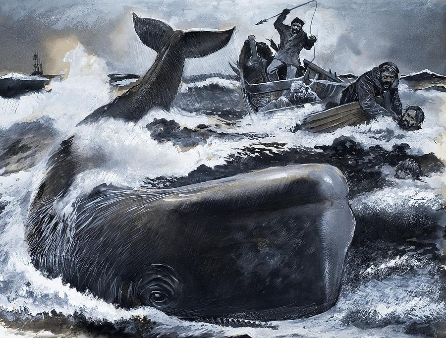 Whaling Scene Painting by English School
