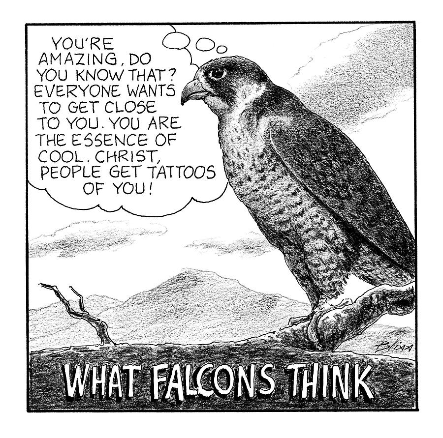 What Falcons Think Drawing by Harry Bliss