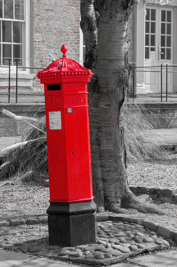 What is in the Mailbox? by Chris Coffee