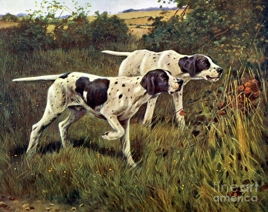 Pointers Painting - What Is It by Thomas Blinks
