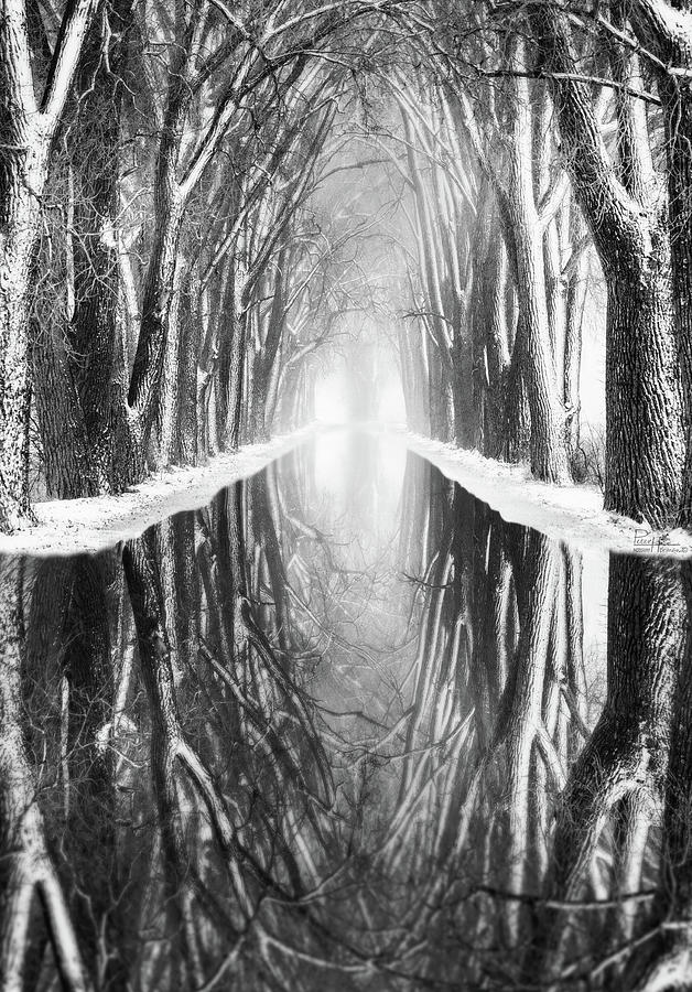 What Lies Beneath and Beyond  #1 -  Tree Tunnel at Haunted Weary Road by Peter Herman