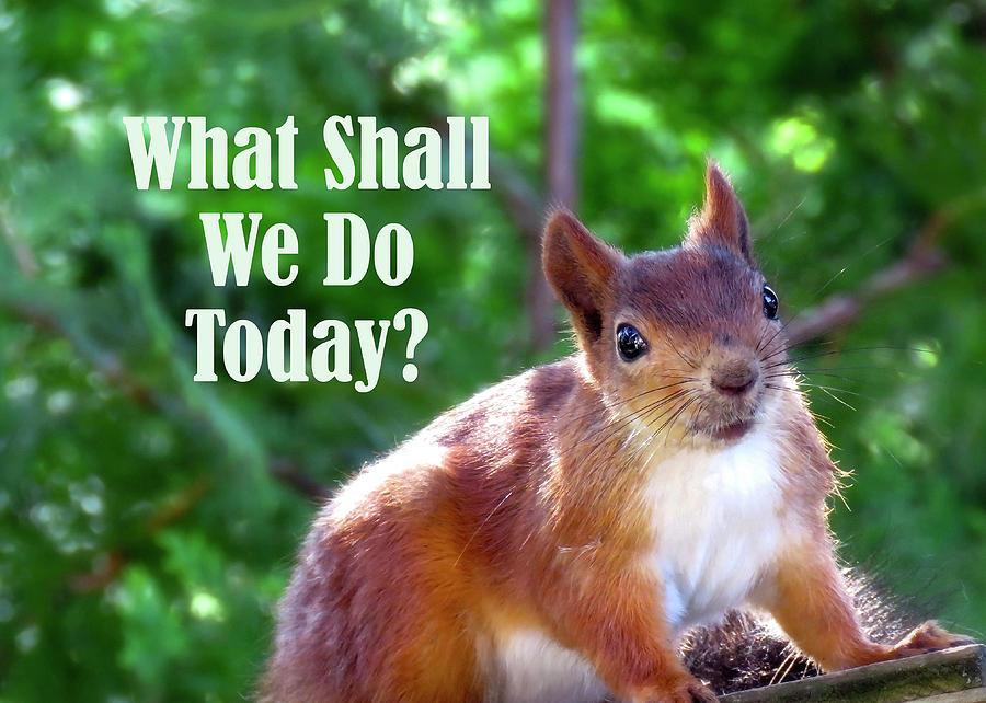 What Shall We Do Today by Johanna Hurmerinta