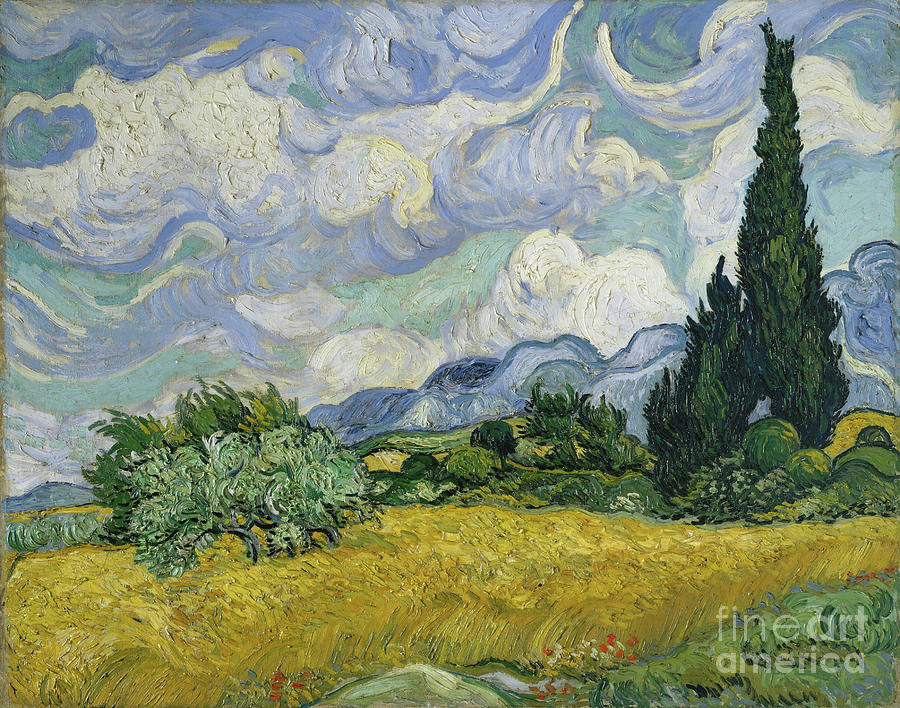 Wheat Field With Cypresses Drawing by Heritage Images
