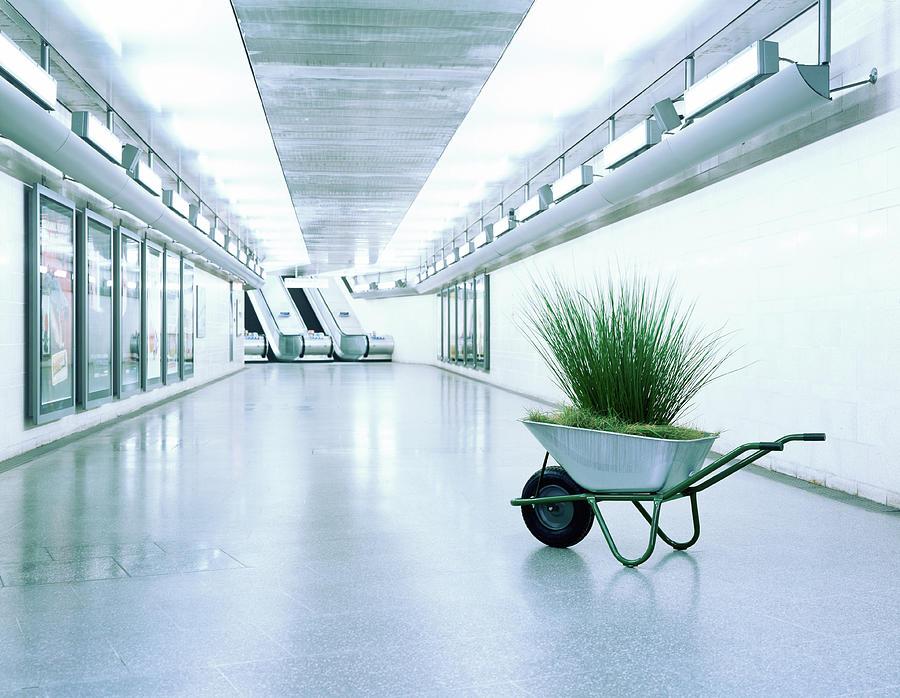 Wheelbarrow Full Of Grass In Corridor Photograph by Kelvin Murray